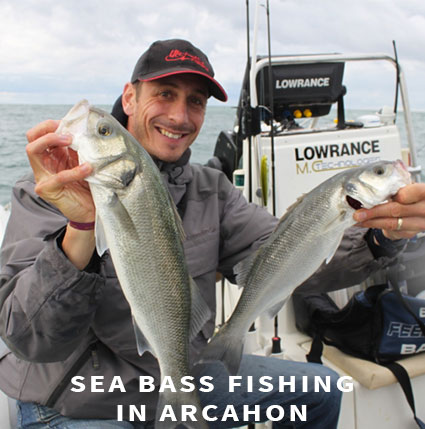 Sea bass fishing in Arcachon