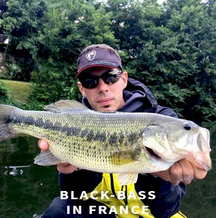 black bass fishing in France