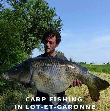 Carp fishing in France in Lot-et-Garonne