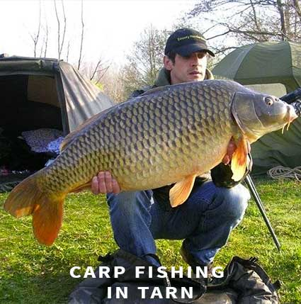 carp fishing in france in tarn