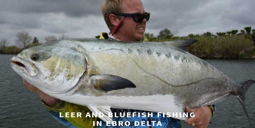 Leer fishing and bluefish fishing in Spain