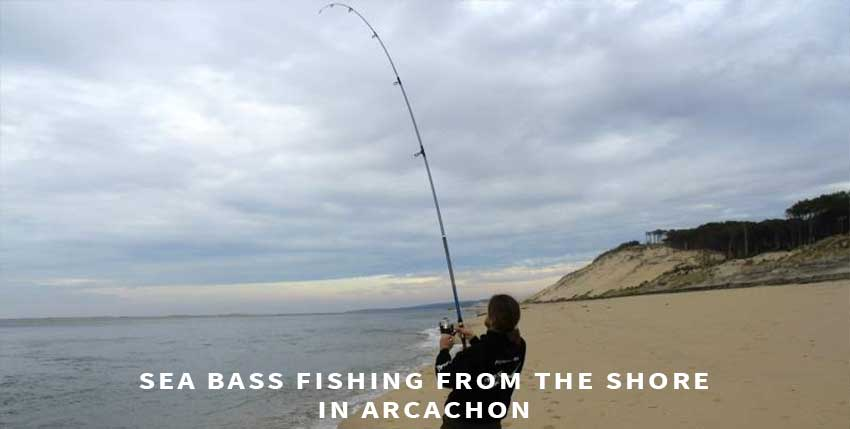 Sea bass fishing from the shore in Arcachon