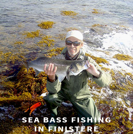 Sea bass fishing in Finistere