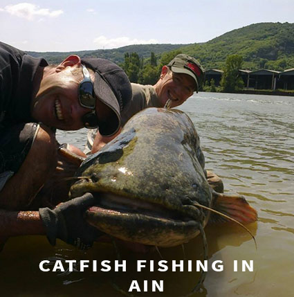 Lure fishing Catfish fishing in Ain