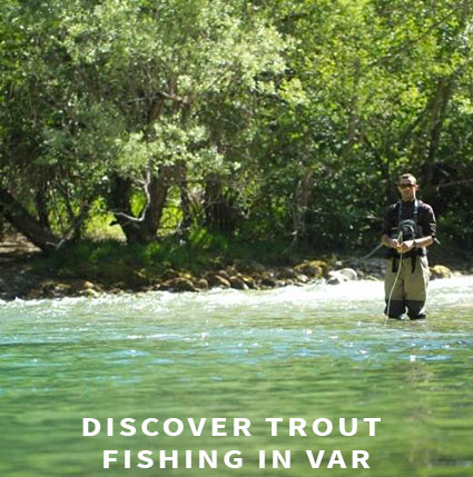 Trout fishing in Var
