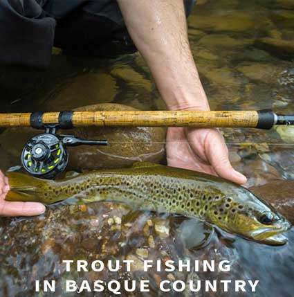 Trout fishing in Basque country