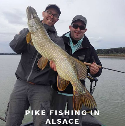 Pike fishing in Alsace