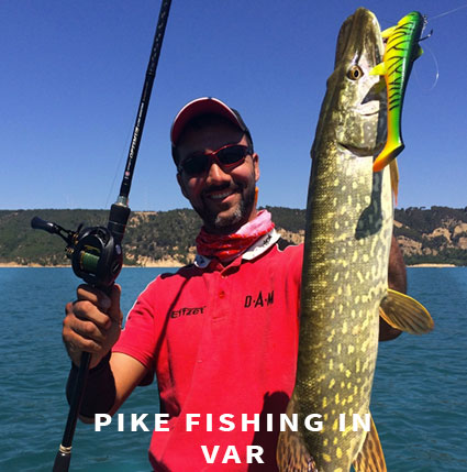 Pike fishing in Var