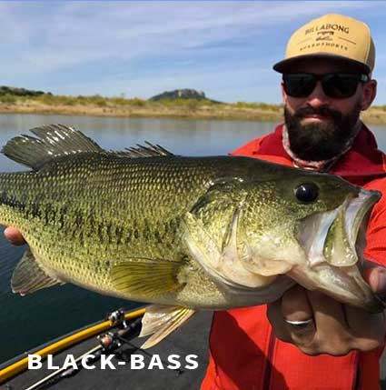 Guide de pêche au black bass