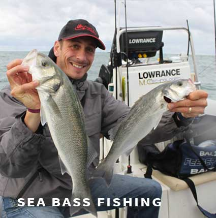 Sea bass fishing in France