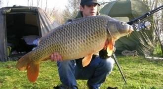 Pêche à la carpe en assistance 24h/24