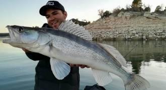 Stage de pêche des carnassiers sur le lac de Mequinenza