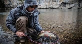 Stage de pêche à la mouche sur la Dordogne Lotoise