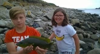 Initiation à la pêche de la vieille aux leurres en Bretagne