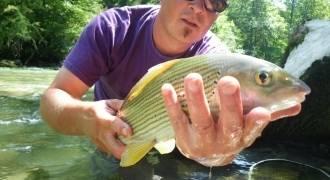 Pêche à la truite sur le Chéran en Savoie et Haute-Savoie