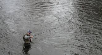 Fly fishing in the Yonne river