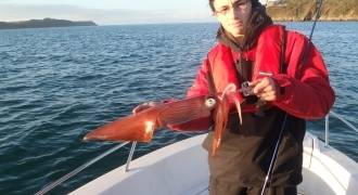 Squid fishing in Finistere