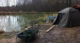 Pêche de la carpe en batterie sur un étang privé dans le Jura