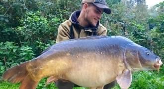 Pêche de la carpe en Picardie