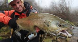 Trout fishing in Catalonia