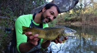 Trout fly fishing in Provence