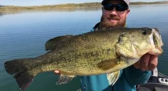 Giant black-bass fishing in Spain