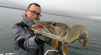 Pêche des carnassiers dans les lacs de la Forêt d'Orient