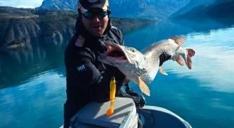 Pêche des carnassiers sur le lac de Serre-Ponçon