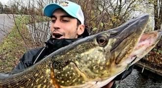 Pêche du brochet dans les polders Hollandais