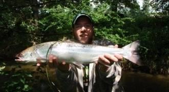 Pêche du saumon en Bretagne et en Basse Normandie
