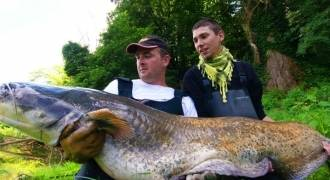 Catfish fishing in Indre