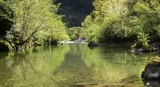 Pêche à la mouche dans le Parc National des Cévennes