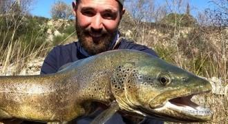 Trout fishing in Verdon
