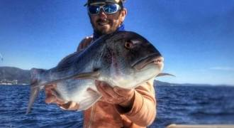 Dentex fishing in the Mediterranean sea