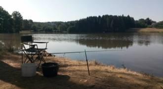 Pêche au feeder en étang ou lac