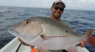 Coastal fishing in Guadeloupe with lures and fly
