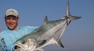 Pêche de la liche amie sur le Delta du Rhône