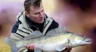 Pêche toute l'année des carnassiers en domaine privé