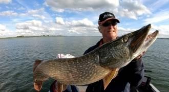 Predator fishing in Holland