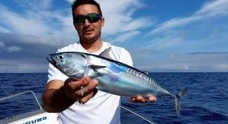 Pêche des pélagiques aux leurres