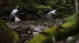 Pêche des salmonidés en ultra léger