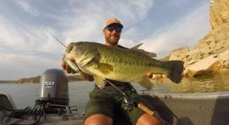 Pêche du black-bass à Mequinenza