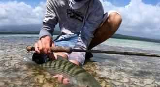Pêche du bord: de la rivière aux flats (4h)