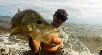 Pêche du bord: des flats aux embouchures de rivières (6h)
