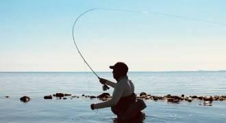 Pêche sur l'Île de Ré à la mouche
