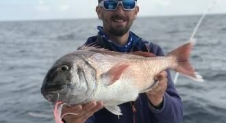 Sea fishing in the Mediteranean sea