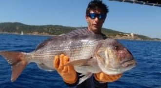 Pêche à la traîne lente au vif sur les îles d'Or