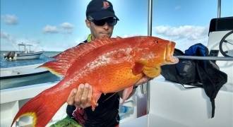 Sortie de pêche à l'Ile Maurice