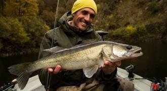 Journée de pêche des carnassiers en bateau