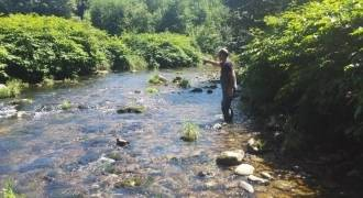 Starting trout fishing in Vosges rivers